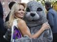 imagen Pamela Anderson apoya a PETA