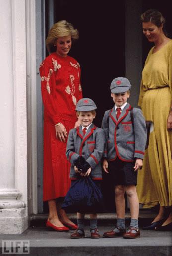 Recordando a la Princesa Diana-13